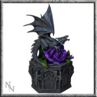 Dragon Beauty Box by Anne Stokes