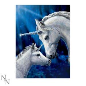 Quadri e Stampe con unicorni